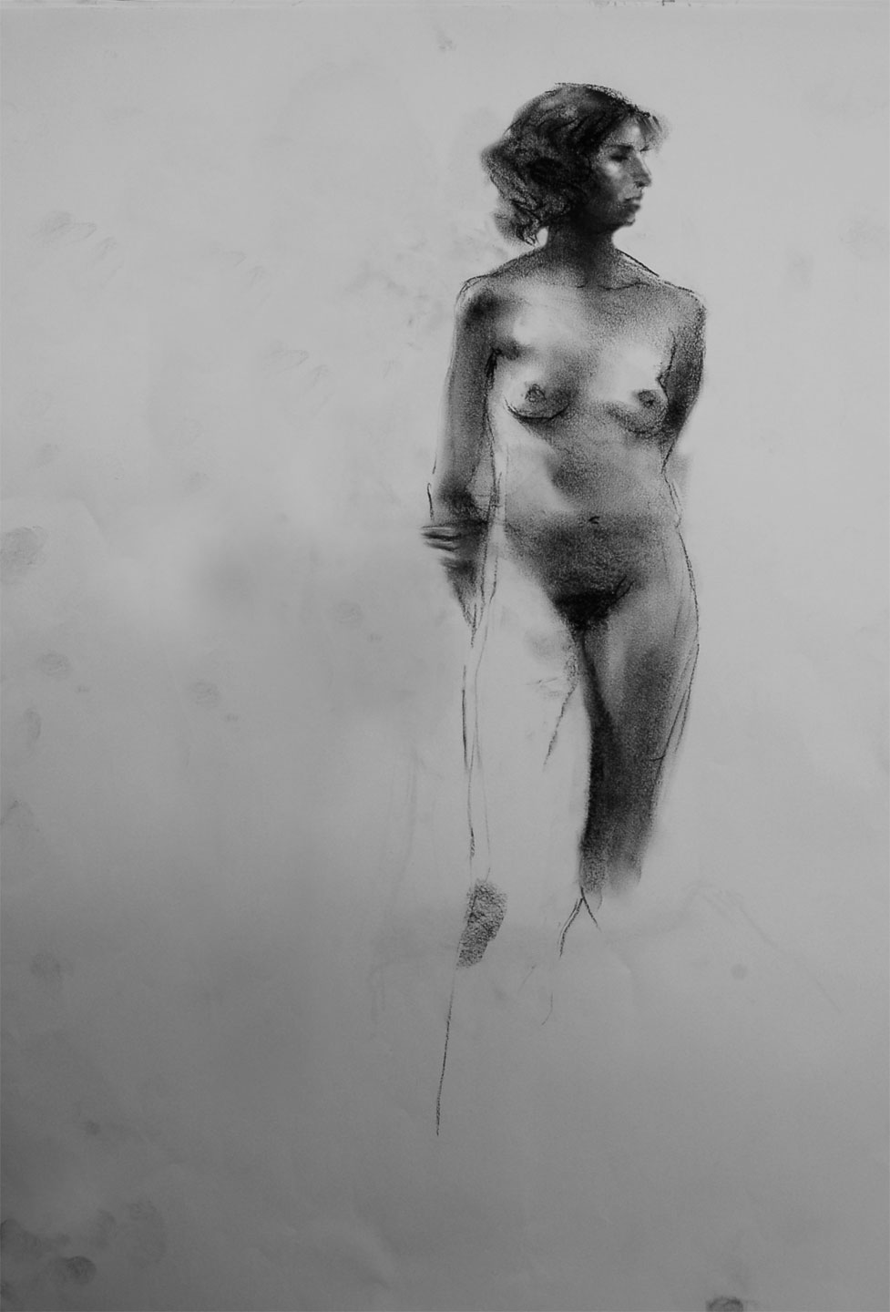 Charcoal on paper  12 X 17 in.