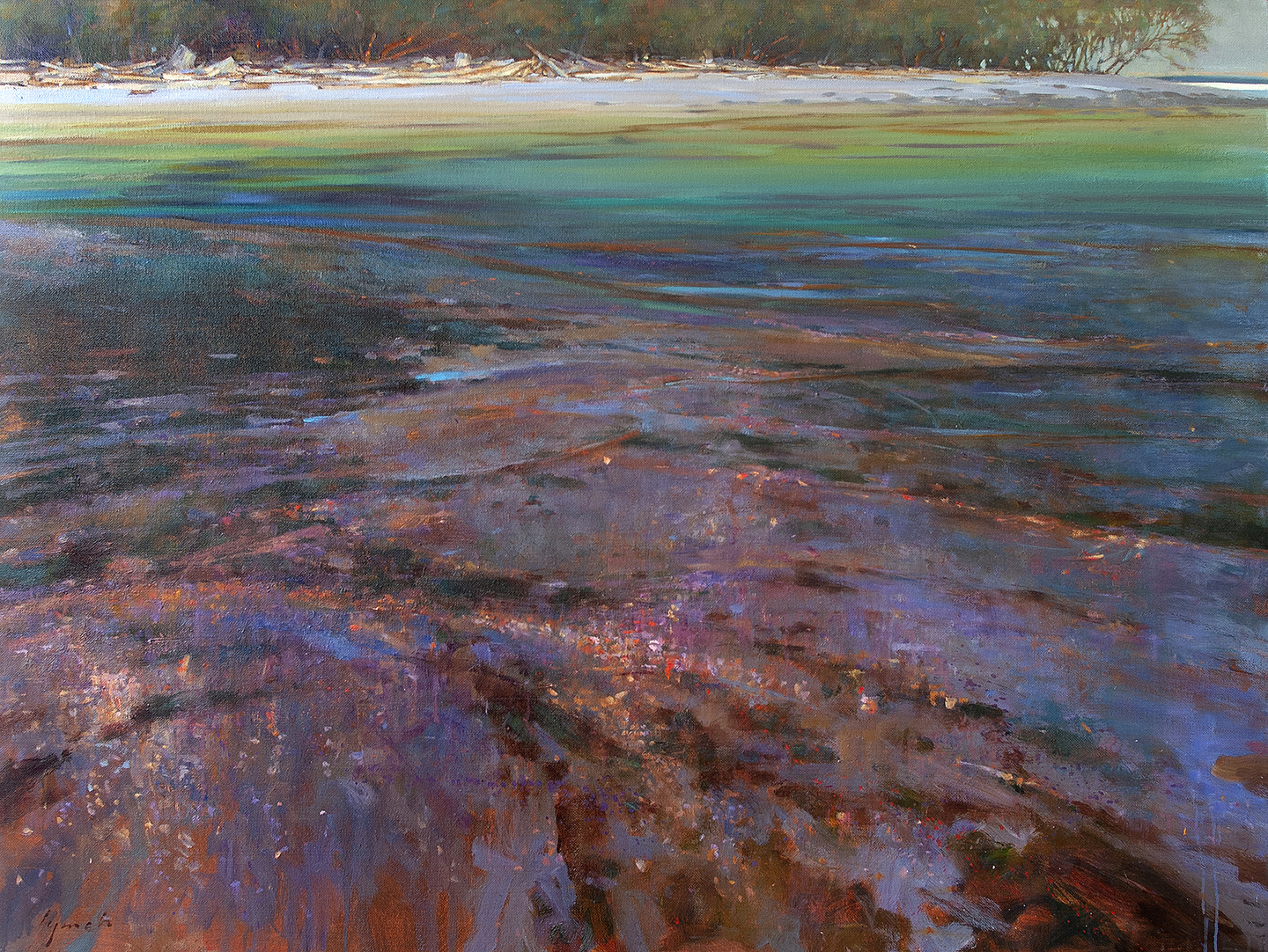 'Sand, Stone and Shells' 36 X 48 in. oil on canvas - The Avenue Gallery