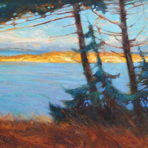 Nanoose Bay BC 2010. 14 X 18 in. oil on prepared board.