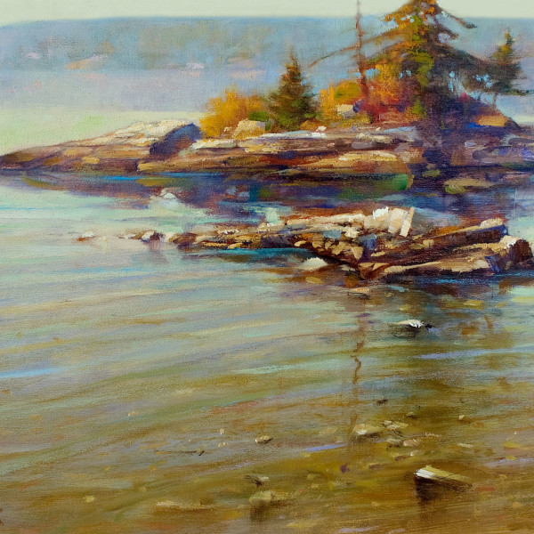 'Zen Island Saltsprings' 16 X 20 in. oil on prepared board